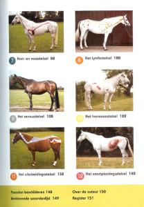 Anatomie-Sportpaard-inhoudsopgave2 Gillian Higgins