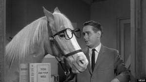 Mister Ed het sprekende paard