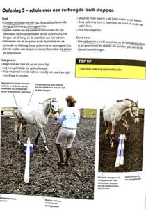 Paardenboeken-informatief