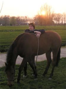 Workshop Veilig en Vertrouwd Omgaan met Paard en Pony