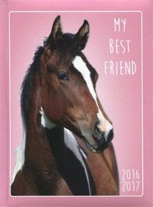 Paarden Schoolagenda 2016-2017 Kopen Tips