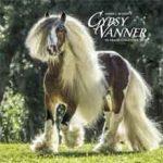 Gypsy Vanner Horse Kalender