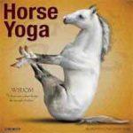 Nieuwe Paarden Kalenders 2018 Horse Yoga