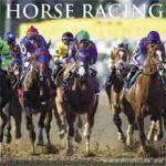 Paarden Kalender 2018 Horse Racing