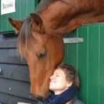 Paarden Ontspanningsmassage