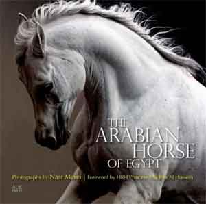 Cynthia Culbertson The Arabian Horse of Egypt Boek Arabisch Volbloed Paard