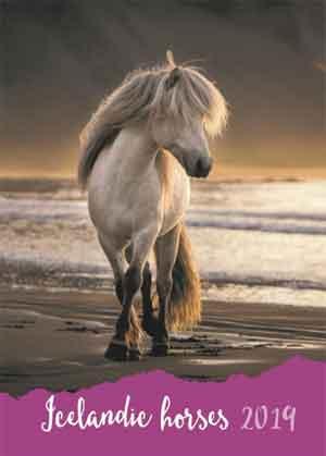 Paarden Agenda 2019 Icelandic Horses